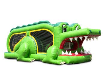 mini run krokodil.jpg