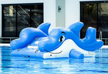 kleine-glijbaan-dolfijn.jpg
