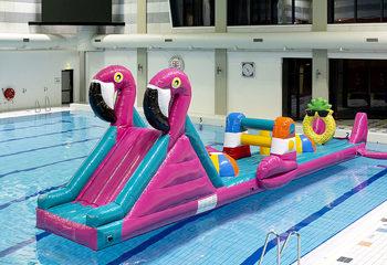 zwembadrun flamingo