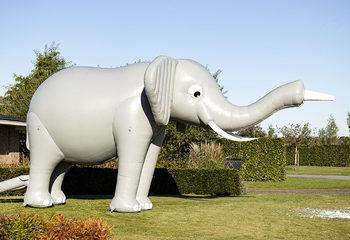 Bubble Special Elephant