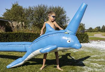 Bubble Shooter Dolphin