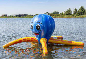 jb waterplay elementen octopus