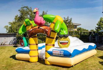 Groot opblaasbaar open bubble boarding park springkussen met schuim te koop in thema tropisch caribbean flamingo voor kinderen