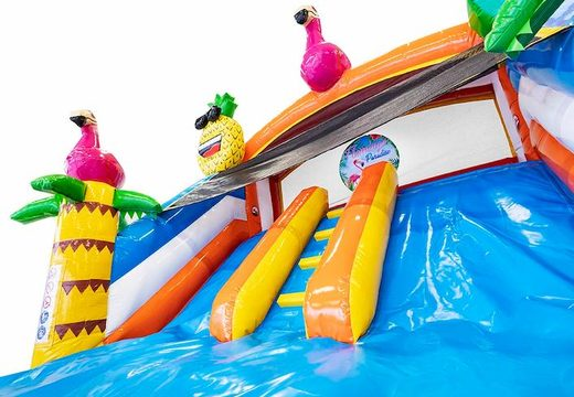 structure gonflable avec piscine et toboggan thème flamant rose à vendre