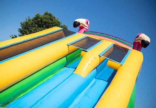 Bestel Drop & Slide Jungle springkasteel met dubbele glijbaan voor kinderen. Koop opblaasbare springkastelen online bij JB Inflatables Nederland